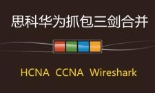 华为HCNA+思科CCNA+Wireshark【三剑合并】