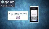 Python全栈自动化测试selenium appium接口