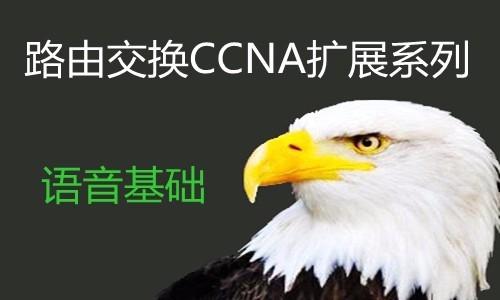 思科 CCNA实战语音视频课程--企业VoIP组网实验