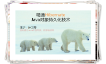 Hibernate持久化技术系列视频课程