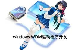 windows wdm驱动程序开发视频课程(即插即用)