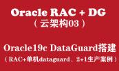Oracle19c RAC+DG生产项目实战(云架构版)