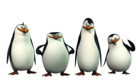 Linux系统管理员