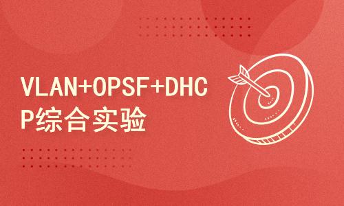 VLAN+OPSF+DHCP综合实验