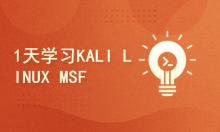 Kali与编程:如何1天学习KALI LINUX MSF渗透框架