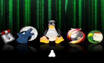 Linux网络服务精讲视频课程